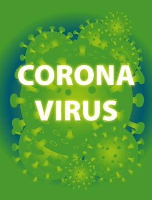 https://schleswig-holstein.de/DE/Landesregierung/VIII/_startseite/Artikel_2020/I/200129_Grippe_Coronavirus.html