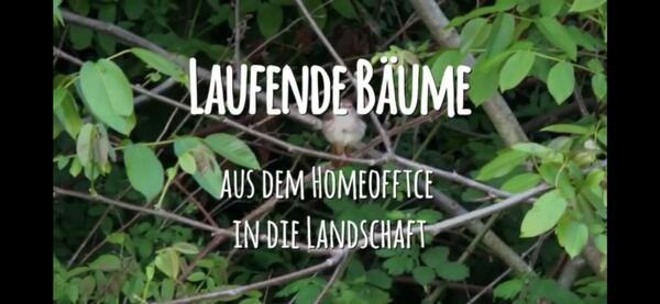 Beitrag_Hinze_Laufende_Bäume